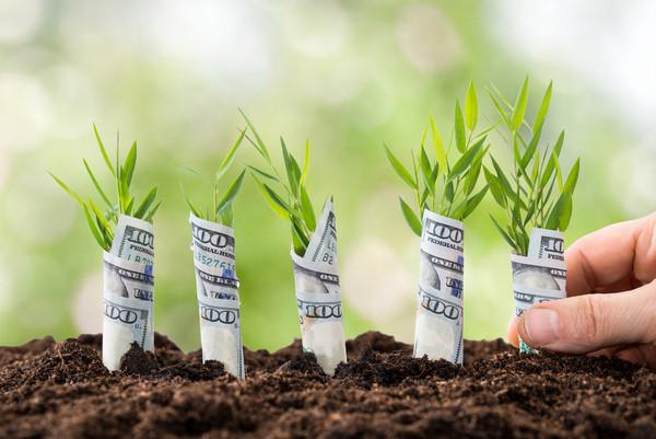 每個月投資100美元,給你的生活帶來鉅變
