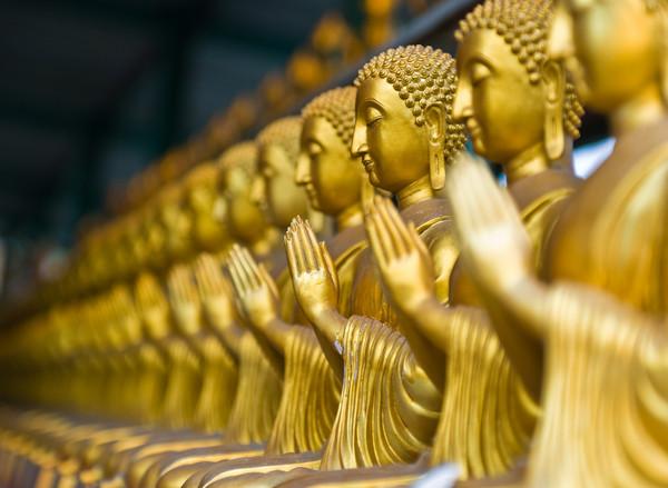 科學與佛教都說:「你」並不存在