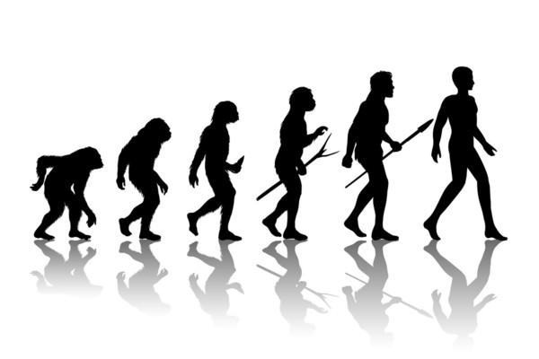 你對進化論的認識是錯誤的