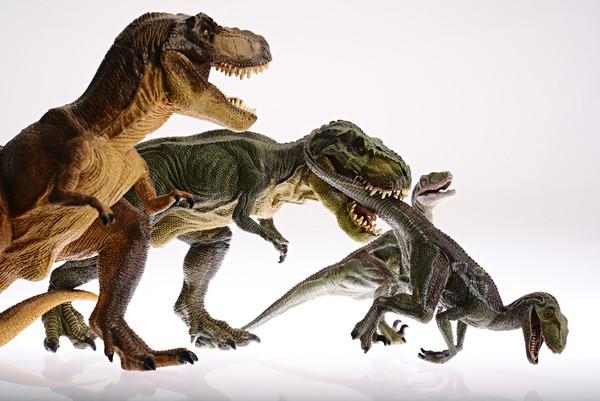 為什麼好萊塢不用羽毛來描繪恐龍