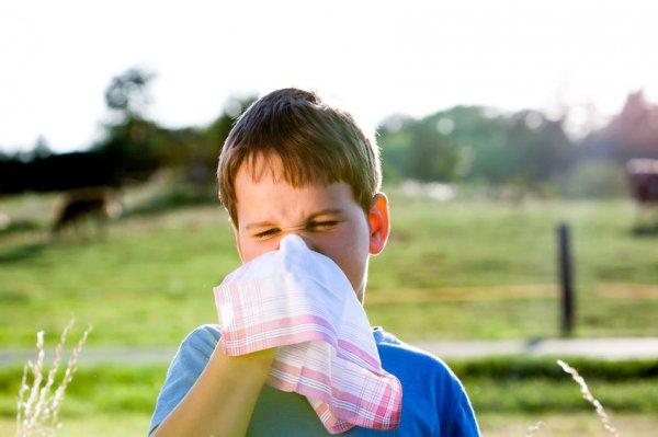 如何科學地擤鼻涕