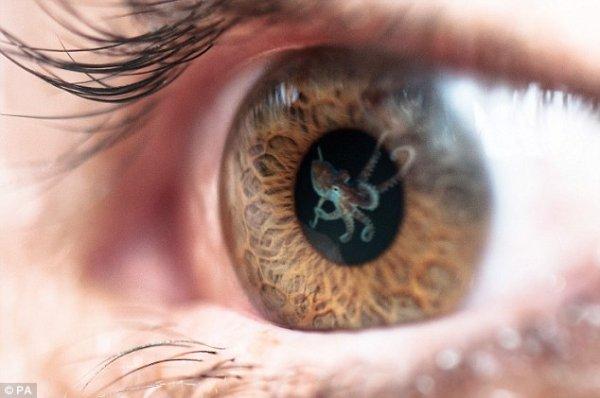人类的眼睛有超能力,只是还没被发掘